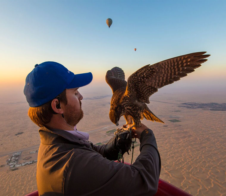 Balloon Adventures Dubai falcons